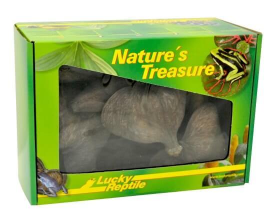 Nature's Treasure
