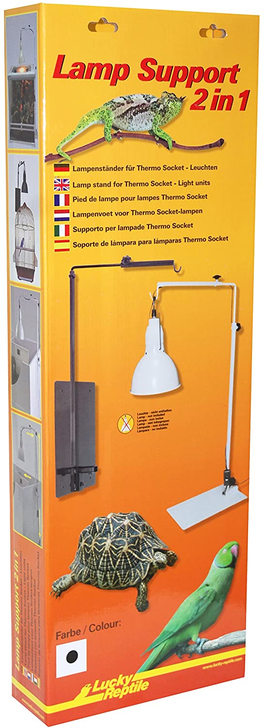 """Lamp Support """"2 in 1"""""""