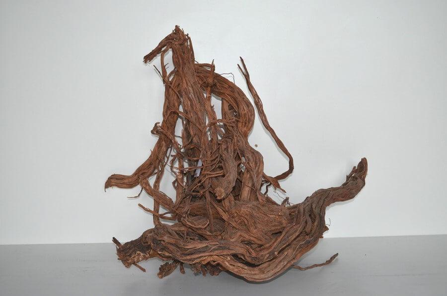 Wurzeln Spiderwood