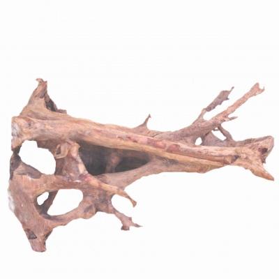 Wurzeln Mangrove ab 100 cm. Bestellen