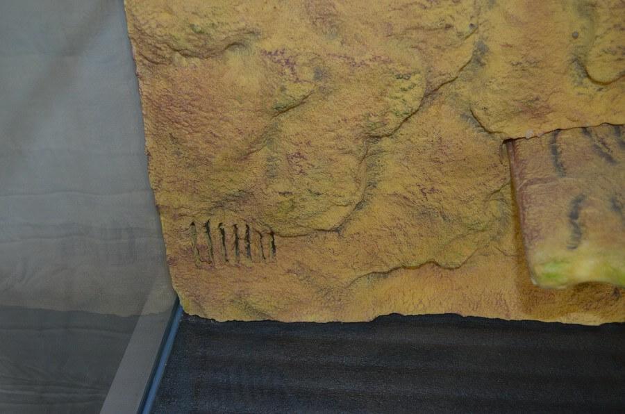 Wasserschildkrötenbecken 150 x 70 x 50 cm