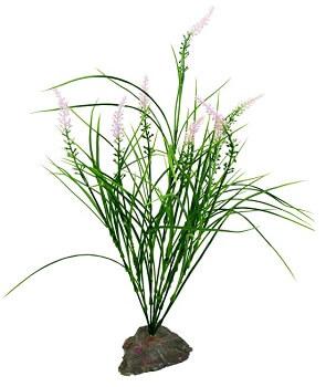 Mediterranes Gras, lila Ähren