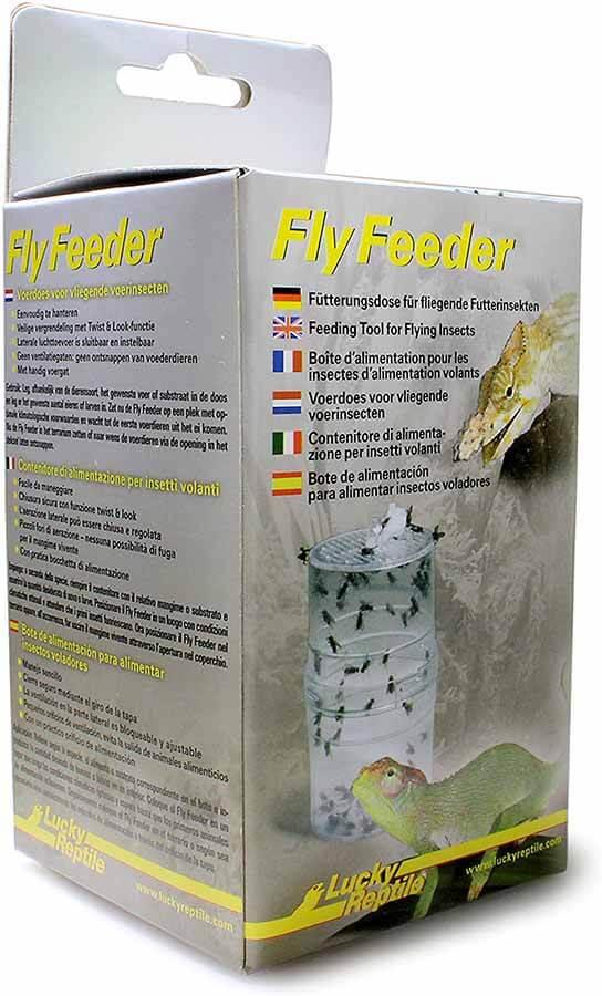 Fly Feeder