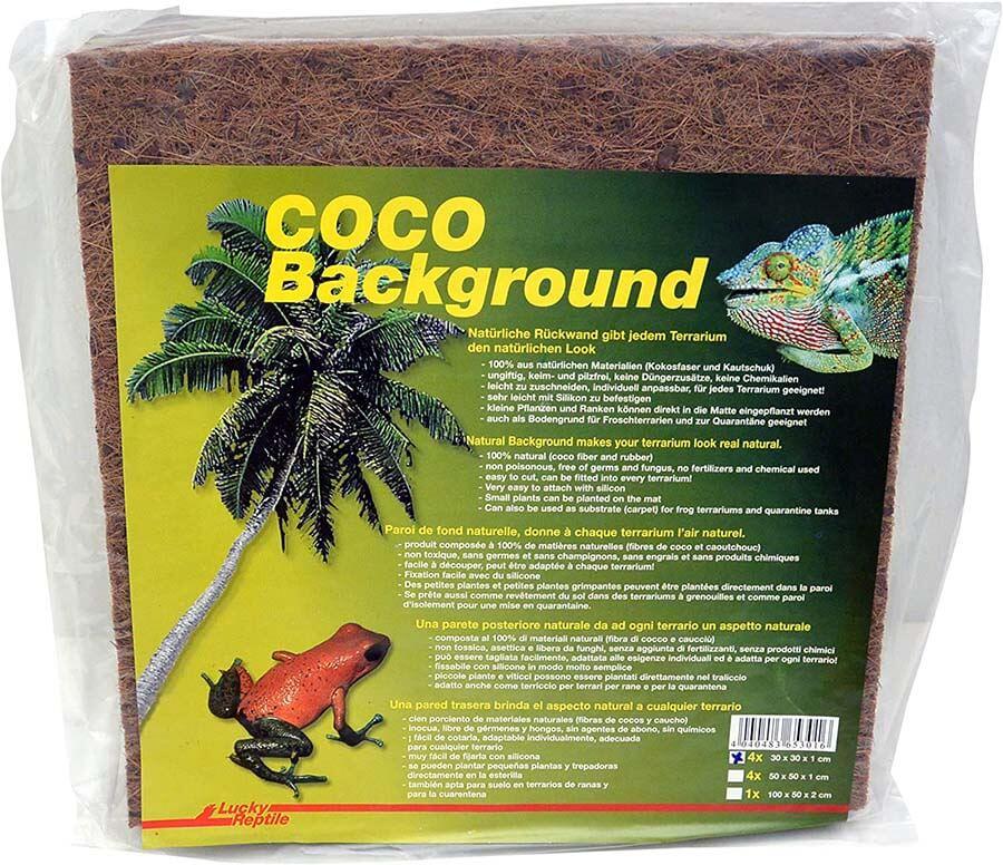 Coco Background
