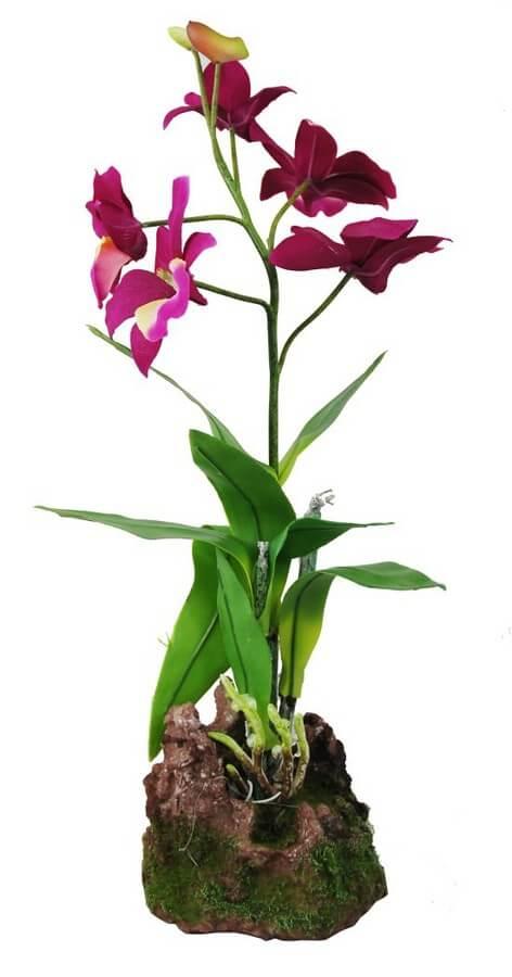 Orchidee Lila gross