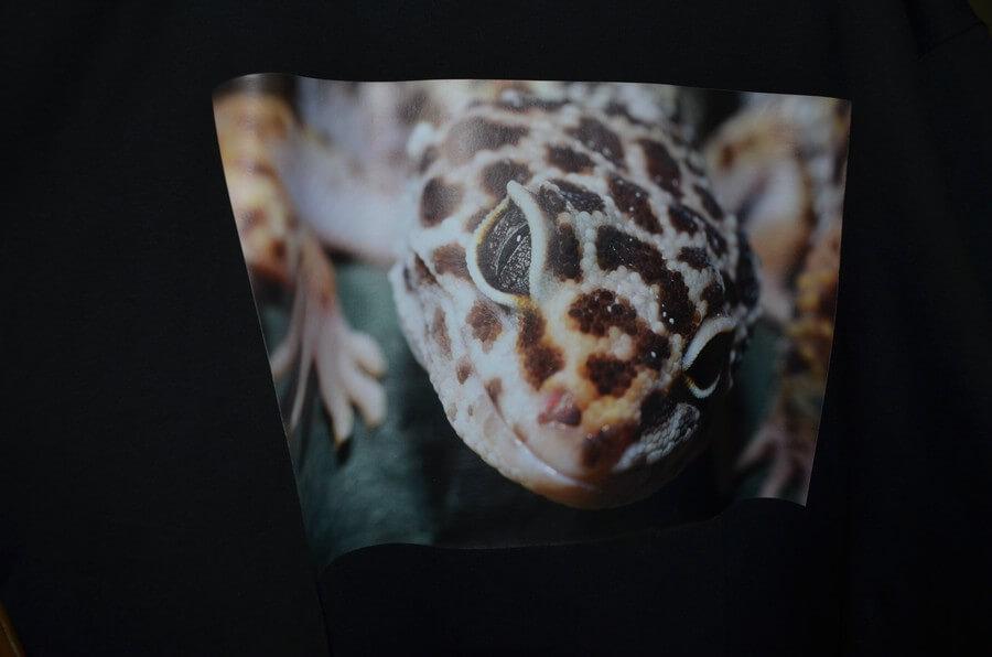 """T-Shirt, Leopardgecko Grösse """"S"""" Schwarz"""
