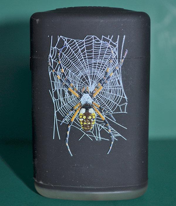 Sturmfeuerzeug Vogelspinne Wespenspinne