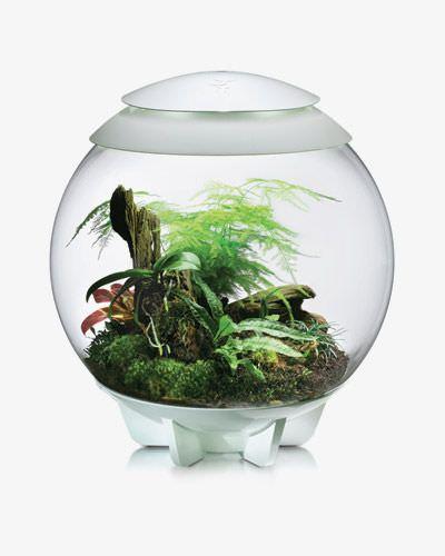 biOrb 60 Liter Terrarium Kugeldurchmesser ca. 50 cm