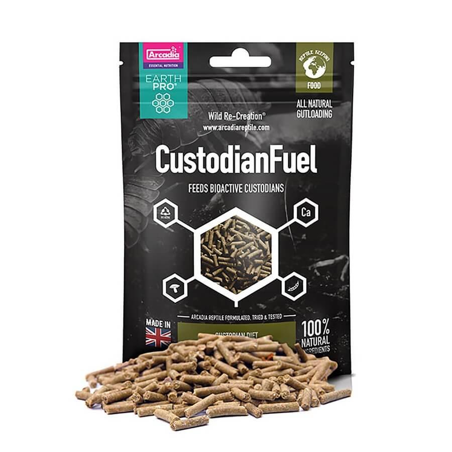EarthPro Custodian Fuel 80 g