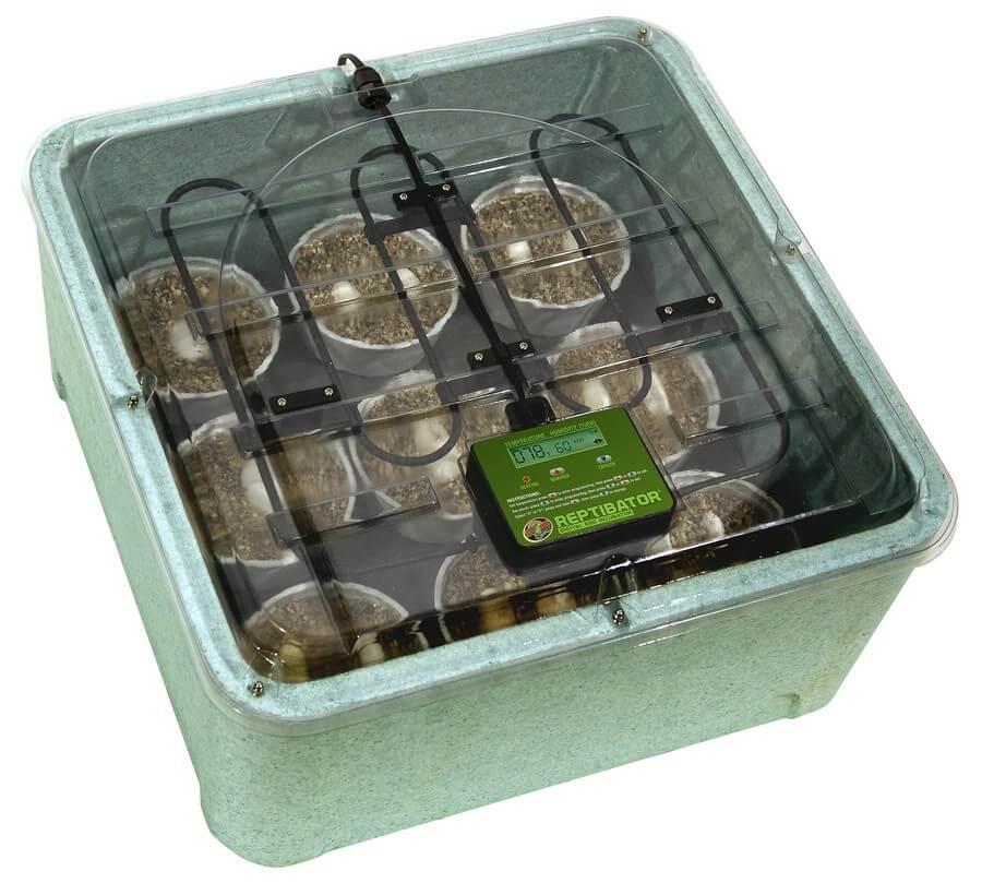 Reptibator Brutapparat / Inkubator