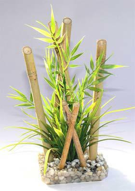 Bamboo XLarge