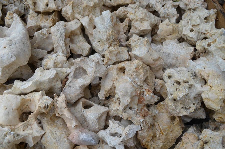 Lochstein Indonesia Rock