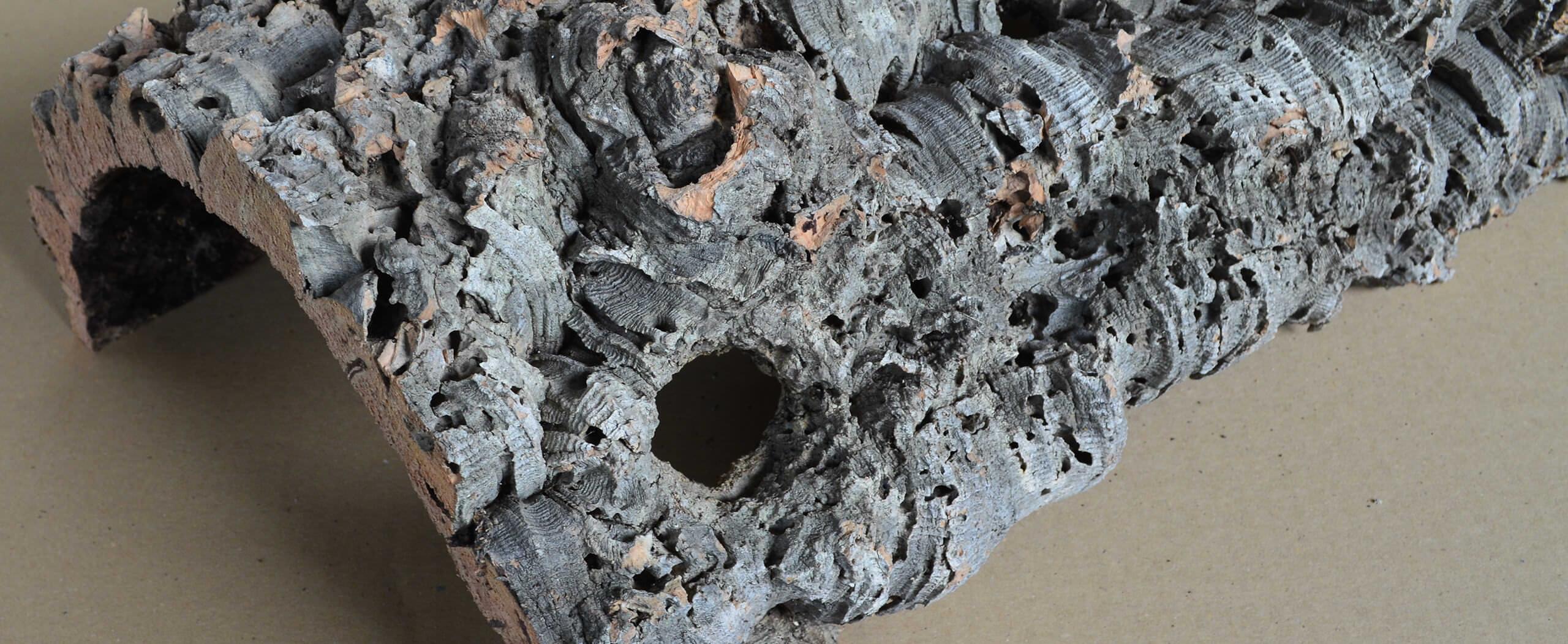 Verstecke aus Holz / Kork für Nager